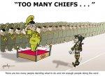 Too Many Police Chiefs cartoon.jpg